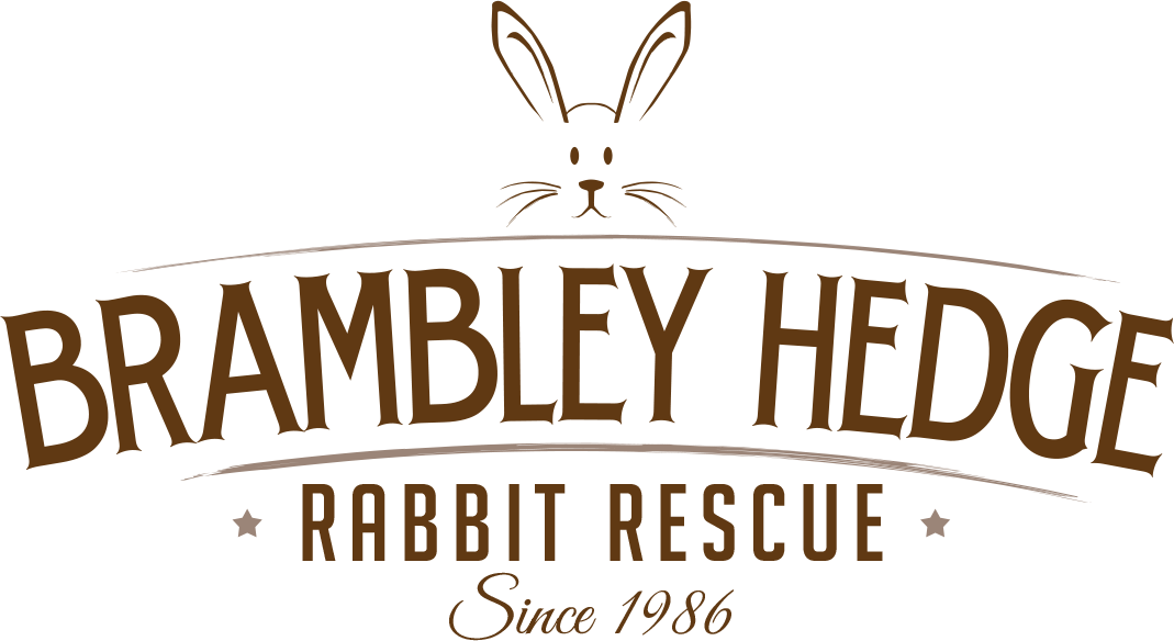 Brambley-Hedge-Rabbit-Rescue-Logo-2